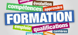 Formation – Emploi Un souci d'adaptation