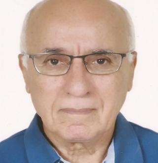 ahmed hanafi