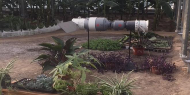 """La Chine utilise la technologie des satellites pour envoyer des graines dans l'espace, puis de semer sur terre les plantes """"mutantes"""" obtenues."""
